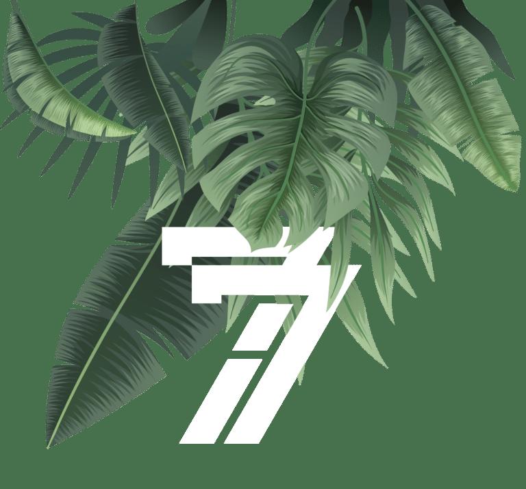 7i7 Medienagentur | Header Blätter